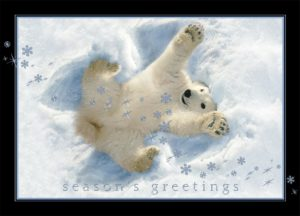 A gleeful polar bear is making a snow angel. The words 'Season's Greetings' are written underneath him.
