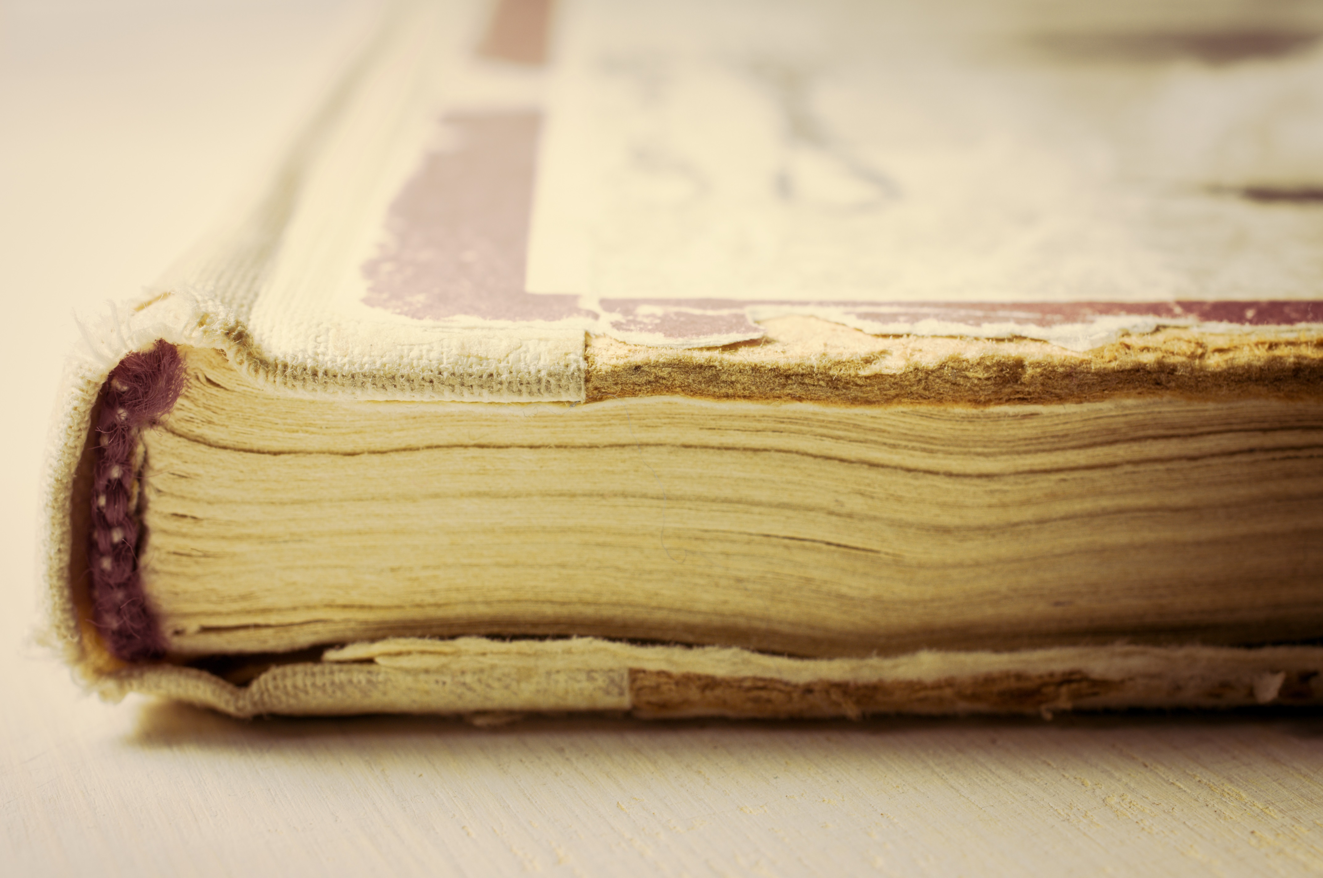 Close-up of an antique cookbook with faded pages of white and touches of red in the design.