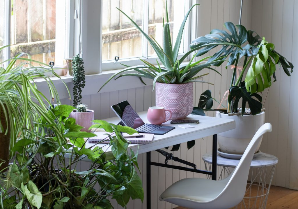 Desk table and chair interior with laptop computer and potted plants